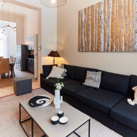 well designed and comfortable living room in a fully refurbished renting house in Brussels
